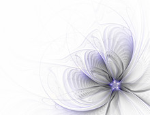Abstract Fractal Flower On White Background