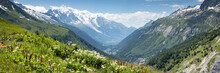 A View Of The Chamonix Valley ...