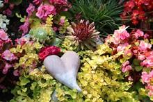 Herz Zwischen Pflanzen Auf Dem Friedhof