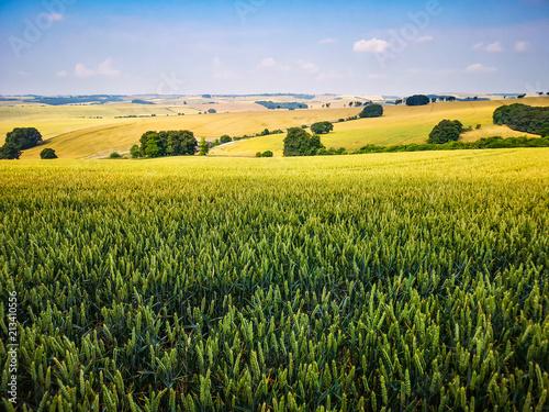 Spoed Foto op Canvas Platteland View of English Countryside Landscape Field on Summer