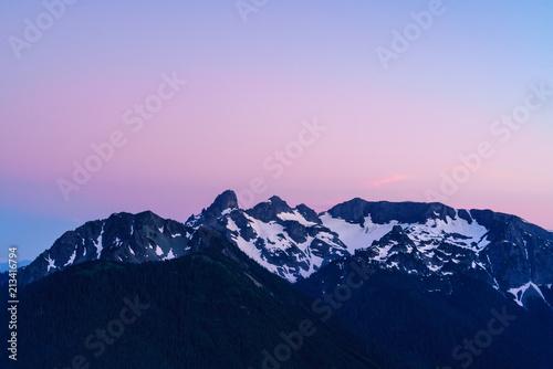Tuinposter Purper Mount Rainier National Park Sunset