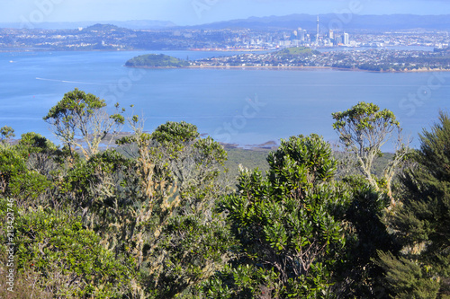 Fotobehang Oceanië Auckland city skyline from Rangitoto Island New Zealand