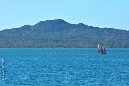 Fotobehang Oceanië Sail boat yacht sailing near Rangitoto Island New Zealand