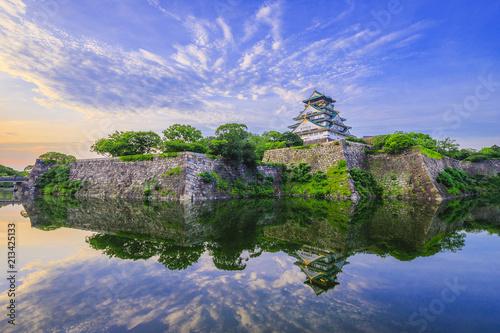 Foto op Plexiglas Historisch geb. 大阪城の風景