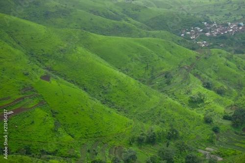 Fototapeta Green landscape surrounded by hills, mountains in monsoon season  obraz na płótnie