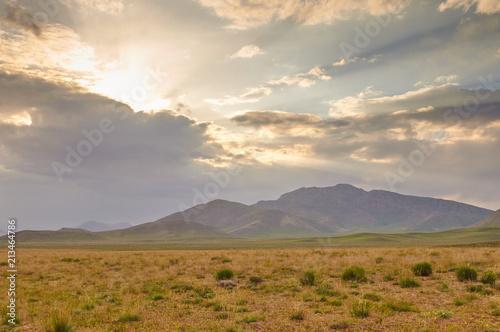 Poster Beige Livestock in Zagros mountains Iran