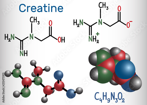 Fotografia  Creatine molecule. Structural chemical formula and molecule model