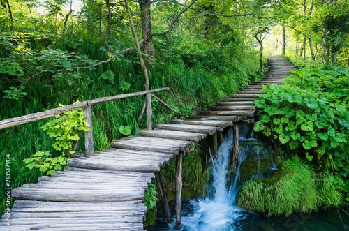 Fototapeta premium Park Narodowy Plitvice, Chorwacja. Ścieżka drewniane deski przez zielony las i nad wodą