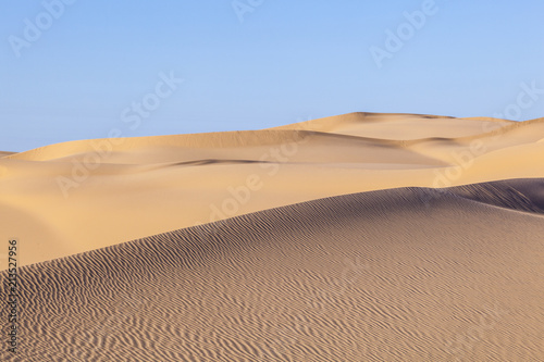 Slika na platnu sand dune in sunrise in the sonoran desert