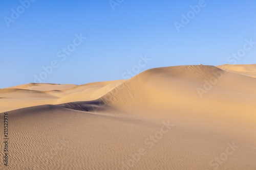 Foto op Aluminium Droogte sand dune in sunrise in the sonoran desert
