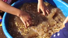 People Make Cleaning Coffee Beans In Water Before Drying To The Sun