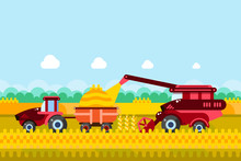 Farming And Agriculture Harvesting Concept. Vector Illustration Of Combine And Tractor On Wheat Or Corn Cereal Field.