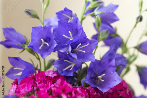 Spoed Foto op Canvas Iris Bright bouquet of flowers - blue bells and small carnations flowers