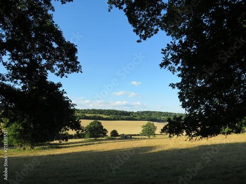 In de dag Zwart Beautiful Surrey hillside - English countryside view
