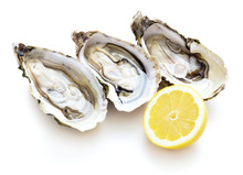Opened Fresh Oysters Isolated On White Background