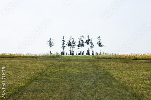 Fotobehang Bomen Tiny tree silhouettes