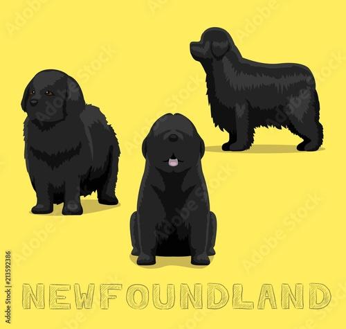 Cuadros en Lienzo Dog Newfoundland Cartoon Vector Illustration