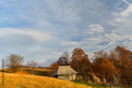 Staande foto Bleke violet Autumn landscape in the Romanian Carpathians