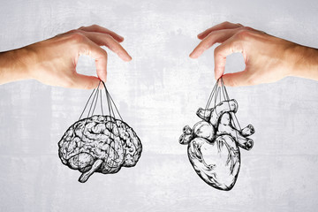 logic and feel concept with heart and brain