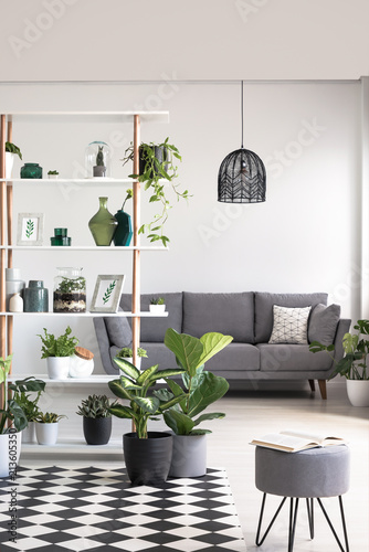 Plants On Checkered Carpet In Grey Living Room Interior With Stool And Lamp  Above Sofa.