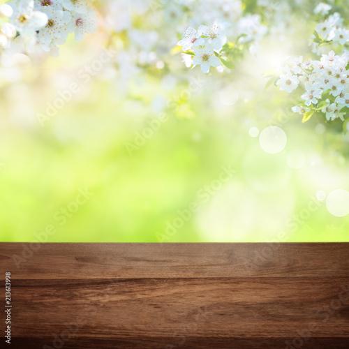 Fototapeta Cherry blossoms in park with wooden table obraz na płótnie