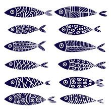 Fish. Set.