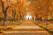 Path through the landscape park on a sunny autumn mornng, beautiful fall season outdoor theme