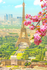 Obraz na Szkle Paryż Cherry blossom branch in foreground and cityscape skyline of Paris with Eiffel Tower on background. Seasonal picturesque background. Scenic wallpaper with Eiffel Tower. Vertical shot.