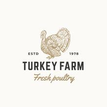 Turkey Farm Fresh Poultry Abst...