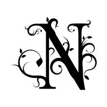 Floral Letter N, Decorative Design Elements