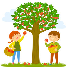 Two Kids Picking Apples From The Tree.