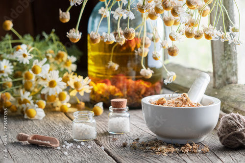 Obraz na płótnie Mortar of dried healing herbs, homeopathic globules, bottle of oil or infusion and bunches of dry chamomile plant