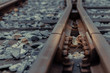 The Old train tracks used since World War II -Shallow depth of field. Selective focus on leaf.