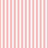 Bezszwowe pasek wzór różowy i biały. Projektowanie tapet, tkanin, tekstyliów. Proste tło - 213678561