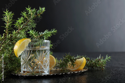 Garden Poster Splashing water Gin , tonic with slices of lemon and a sprig of juniper .