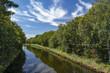 Fluss - Himmel - Bäume