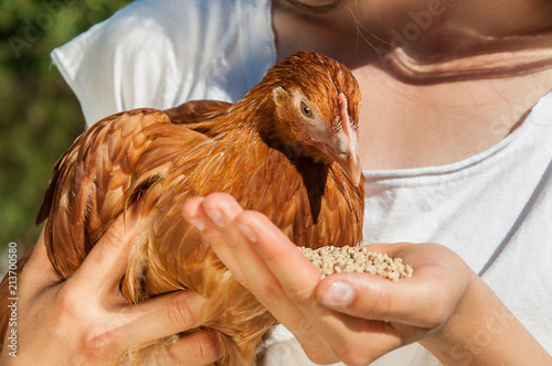 A woman is feeding a chicken