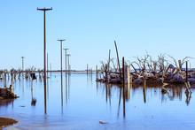 Water Amidst Demolished Buildi...