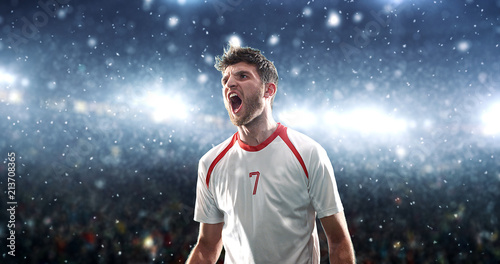 Fotografiet  Soccer player celebrates a victory on the professional stadium while it's snowing