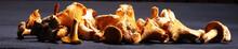 Mushrooms Chanterelle On Table...