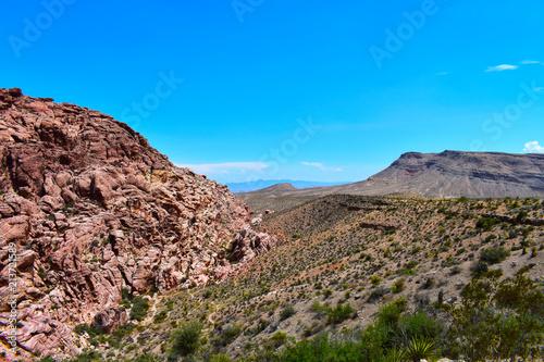 Foto op Aluminium Zalm Red Rock Canyon