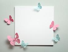 Paper Butterfly On Blank Card