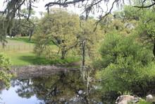 Private Lake, Atascadero , CA
