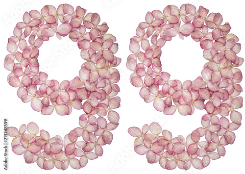 Photographie  Arabic numeral 99, ninety nine, from flowers of hydrangea, isolated on white bac