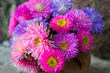 Pink and purple flowers of Aster. Bouquet of flowers.