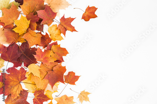 Fototapeta Autumn composition. Frame made of autumn dried leaves on white background. Flat lay, top view, copy space obraz