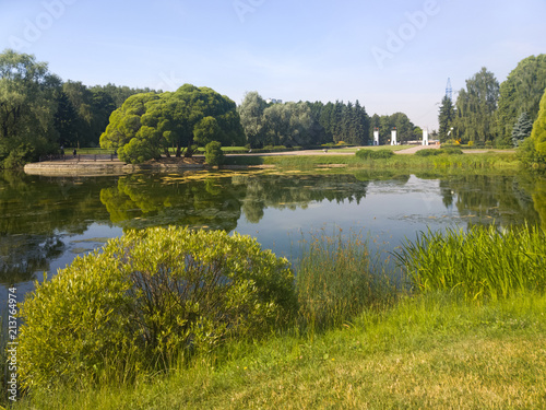 A picturesque pond with overgrown green banks in the city Park. Summer, Sunny morning.