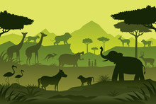 Animals And Wildlife Green Bac...