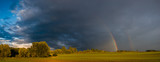 Fototapeta Tęcza -  double rainbow in the evening sky over a field in Germany, Panorama