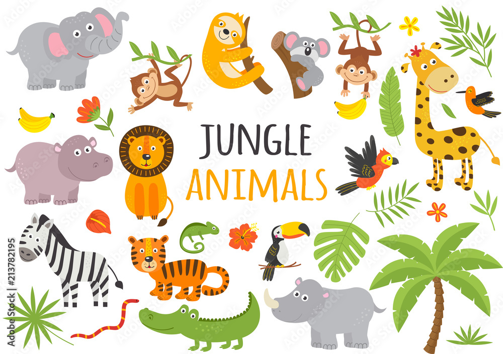 Fototapeta set of isolated jungle animals and tropical plants  -  vector illustration, eps